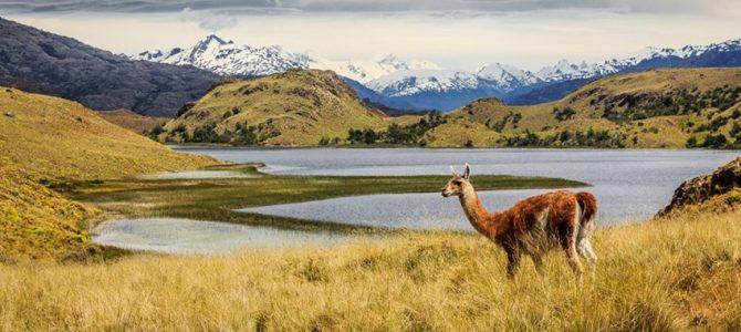 世界最新的国家公园介绍 其中有中国一个